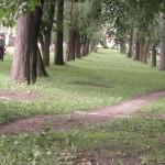 Алея в парку (новому)